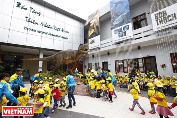 越南第一座自然博物馆 hinh anh 1