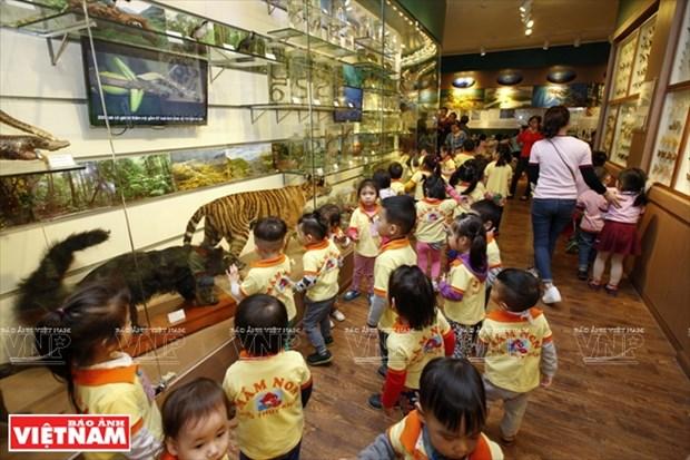 越南第一座自然博物馆 hinh anh 4