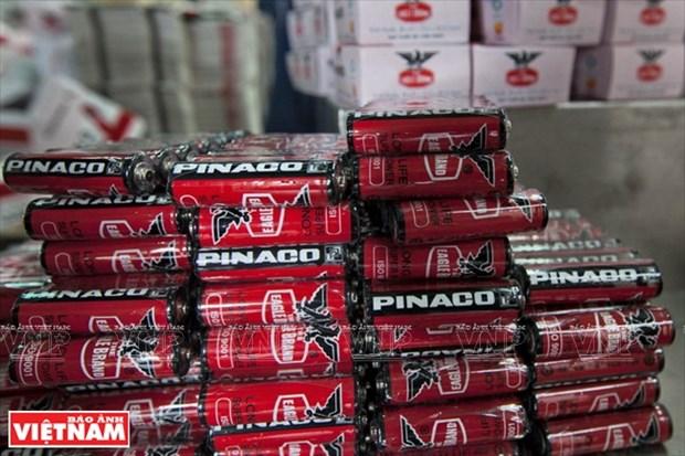 越南一流电池和电瓶厂家PINACO hinh anh 9