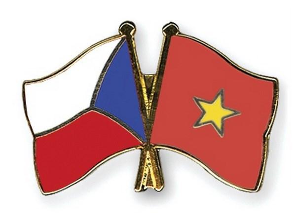 越南与捷克政治磋商在越南举行 hinh anh 1