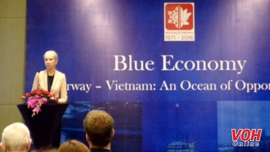 挪威驻越大使:两国海洋经济、航行与石油发展优势显著 hinh anh 1
