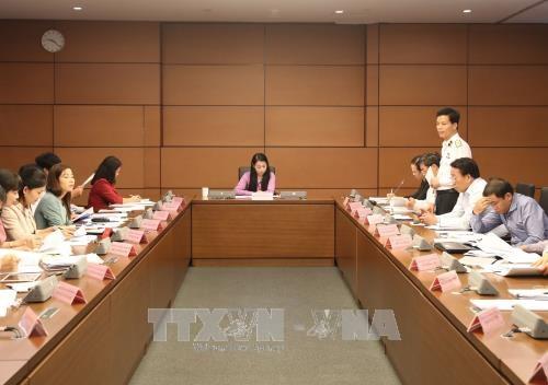 越南第十四届国会第四次会议公报(第十七号) hinh anh 1