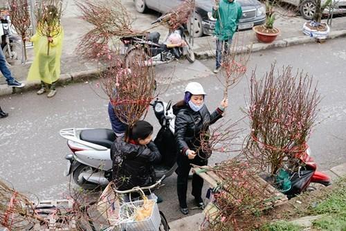 河内春节期间不能错过的四大集市 hinh anh 2