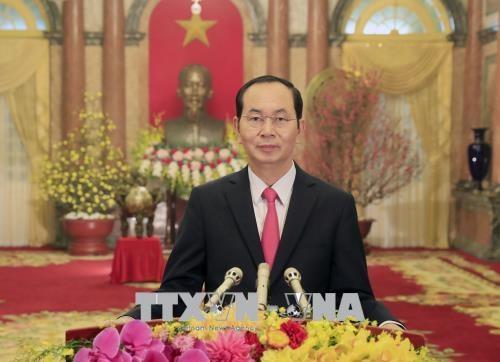 越南国家主席陈大光发表2018戊戌年新年贺词 hinh anh 1