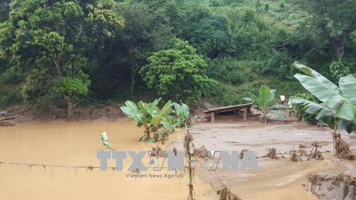 老挝领导人致电慰问越南三号台风灾区灾民 hinh anh 1