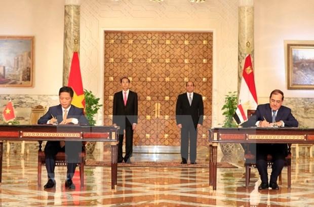 越南与埃及联合声明:巩固两国战略互信 hinh anh 1