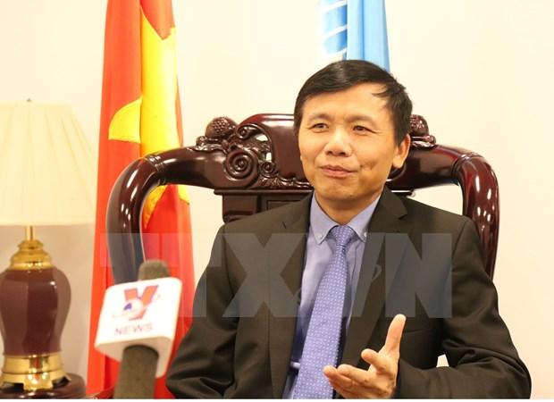 越南是联合国积极且具有责任的成员 hinh anh 1