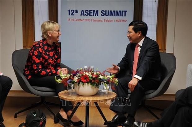 ASEM 12:越南政府副总理兼外长范平明进行多场双边会晤 hinh anh 1