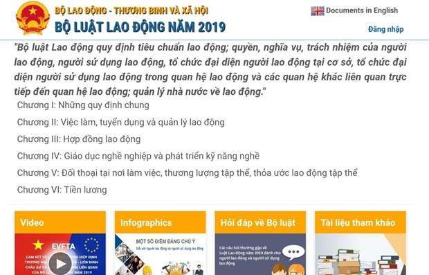 引导实施《劳动法》的网站开通 hinh anh 1