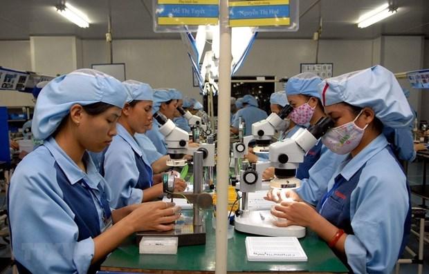 越南人力资源短缺:挑战还是机遇? hinh anh 2