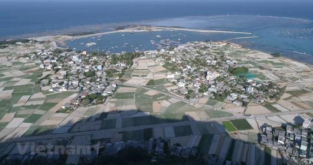 组图:航拍镜头下的广义省李山岛美景 hinh anh 3