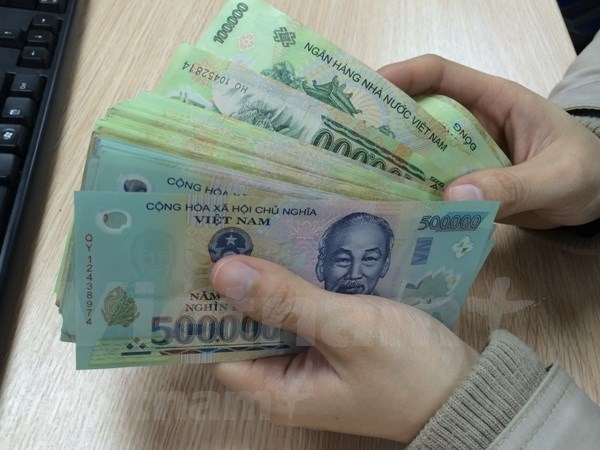 2019年越南银行业努力将广义货币增长率提升为14% hinh anh 1
