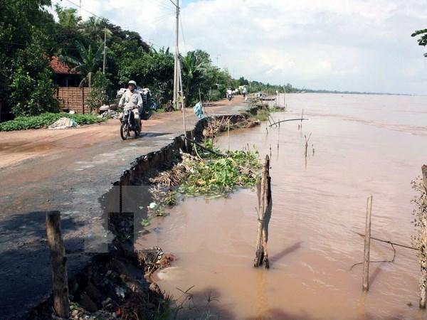 亚洲农民合作组织各国分享应对气候变化的成功经验 hinh anh 2