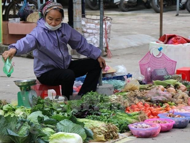春节购物需求拉动影响全国CPI上涨0.8% hinh anh 2