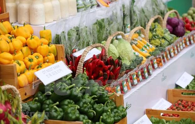 春节购物需求拉动影响全国CPI上涨0.8% hinh anh 1