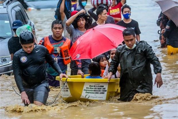 """台风""""梵高"""" 致使菲律宾26人死亡 hinh anh 1"""