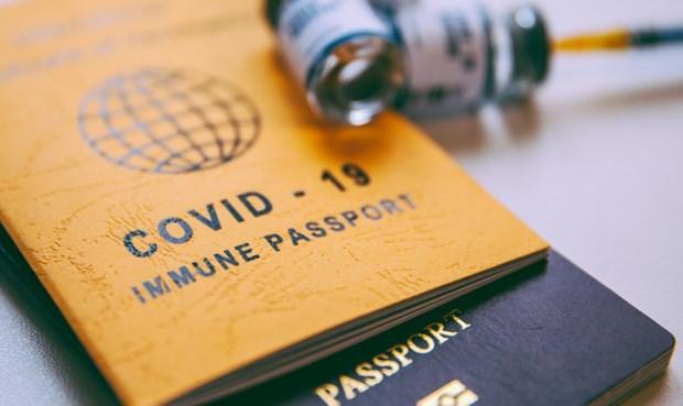 """试点使用""""疫苗护照""""——为越南旅游业复苏点燃希望 hinh anh 1"""