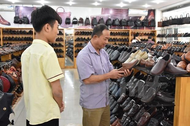 《越南欧盟自贸协定》--越南企业深度参与全球供应链之钥 hinh anh 3
