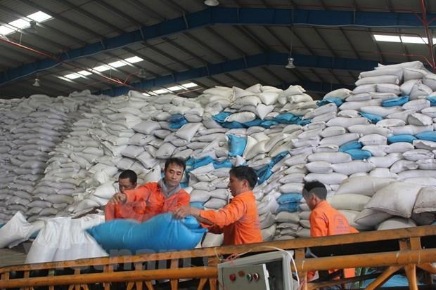 世界贸易下滑 越南贸易出口依然保持8%以上的增长 hinh anh 1