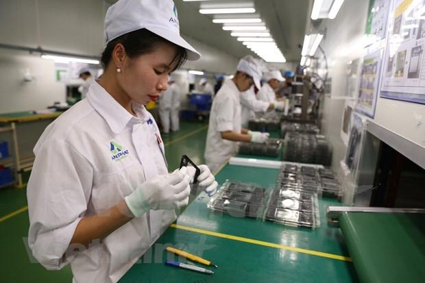 世界贸易下滑 越南贸易出口依然保持8%以上的增长 hinh anh 3