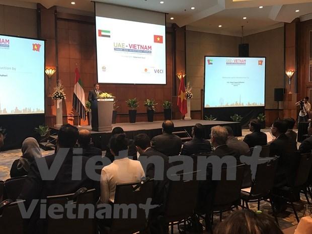 阿联酋——越南商品进军中东市场的战略窗口 hinh anh 1