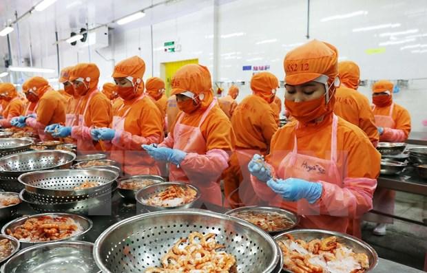 新加坡专家: 越南经济取得了令人印象深刻的成就 hinh anh 1