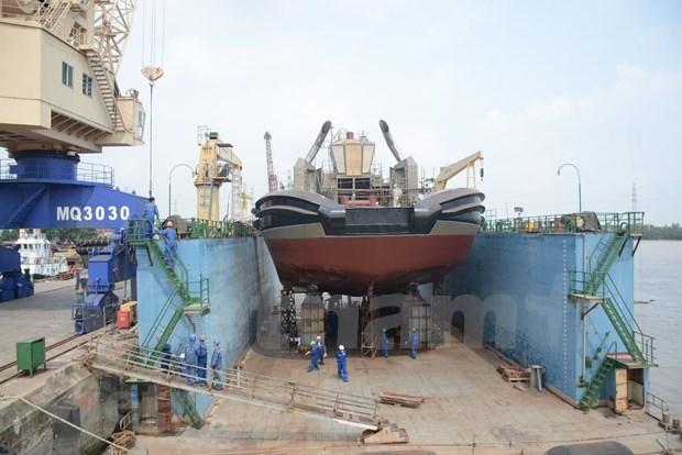 海运和造船成为海洋战略中的重要因素 hinh anh 2