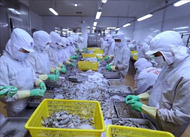 越南对以色列贸易顺差继续扩大 hinh anh 1