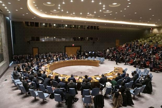 越南与联合国安理会:政府副总理兼外长范平明主持公开辩论会 hinh anh 2