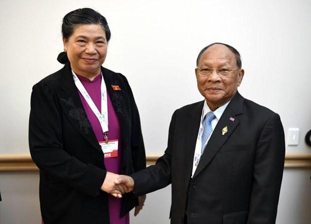 越南为亚太议会论坛第28届年会成功召开作出积极贡献 hinh anh 2