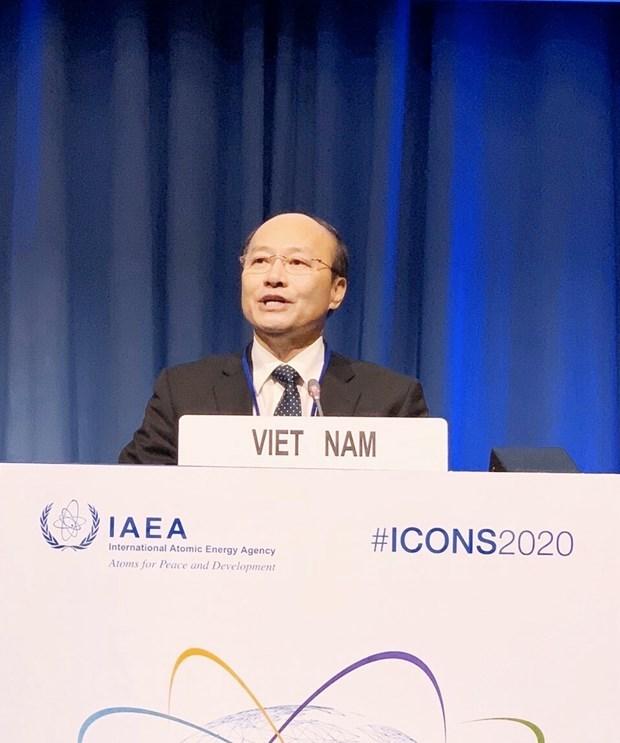 越南积极参与核安全合作 hinh anh 2