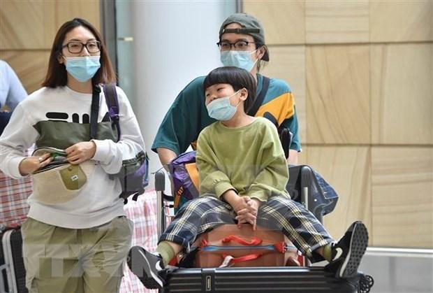 越南整个旅游业协力抗击新冠肺炎疫情 hinh anh 1