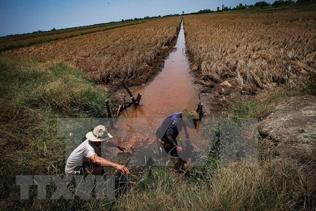 全力找水源助力全国最大水稻生产基地防旱抗咸 hinh anh 1