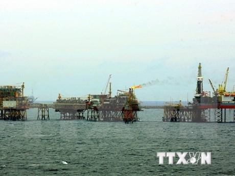越南石油勘探和开采总公司的石油开采量超额完成计划 hinh anh 1