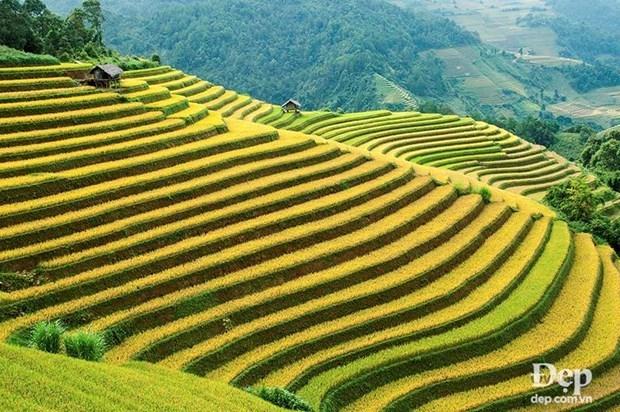 越南安沛省木江界县旅程中不可错过的美景 hinh anh 2