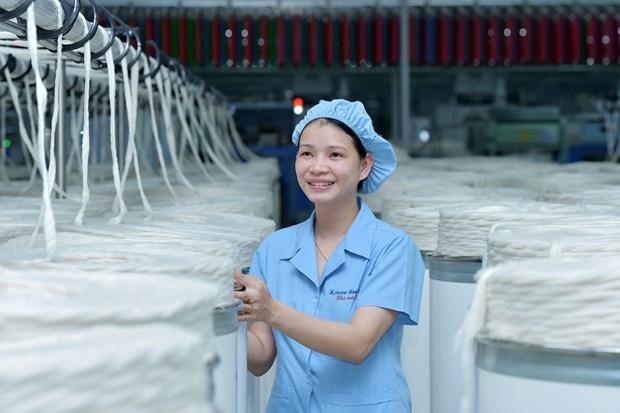 EVFTA:越南企业进军欧盟市场的良机 hinh anh 1