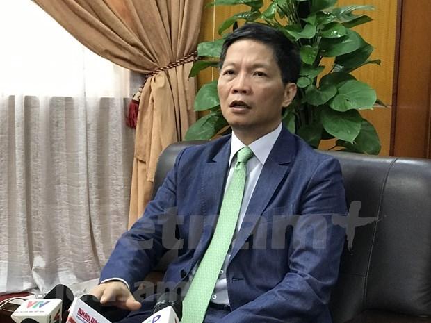 EVFTA:越南企业进军欧盟市场的良机 hinh anh 2