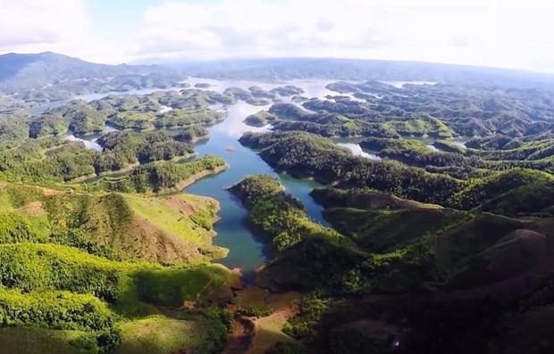 2020年世界环境日:努力传播绿色文明 打造绿色未来 hinh anh 1