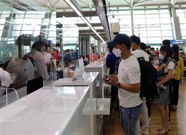 250名在韩越南公民已安全回国 hinh anh 1