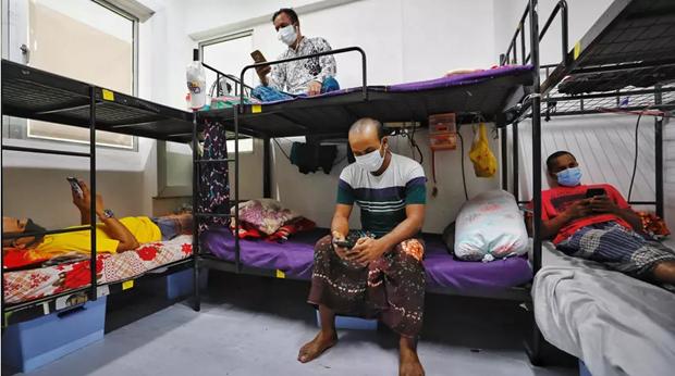 新加坡在移民劳工宿舍发现新冠肺炎确诊病例 印尼单日新增病例创7月底以来新高 hinh anh 1