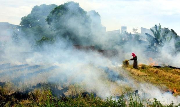 越南力争在2030年将温室气体排放量减少9% hinh anh 1