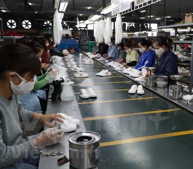 疫情期间越南内资企业出口成为贸易活动的亮点 hinh anh 1