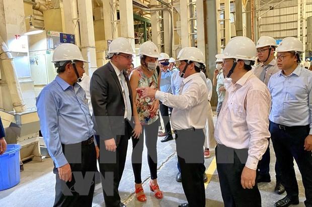 EVFTA为越南大米开辟进入欧盟市场大门 hinh anh 2