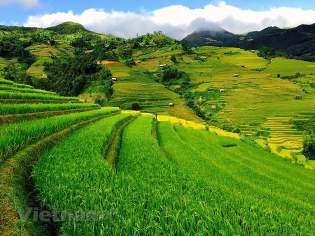 越南西北山林令人痴迷的木江界 hinh anh 1