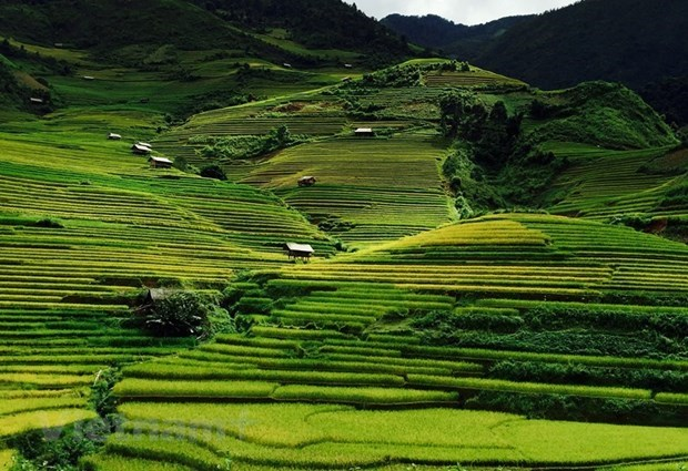 越南西北山林令人痴迷的木江界 hinh anh 2