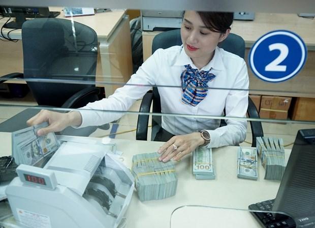 2020年越南侨汇收入将减少7%以上 达到157亿美元 hinh anh 1
