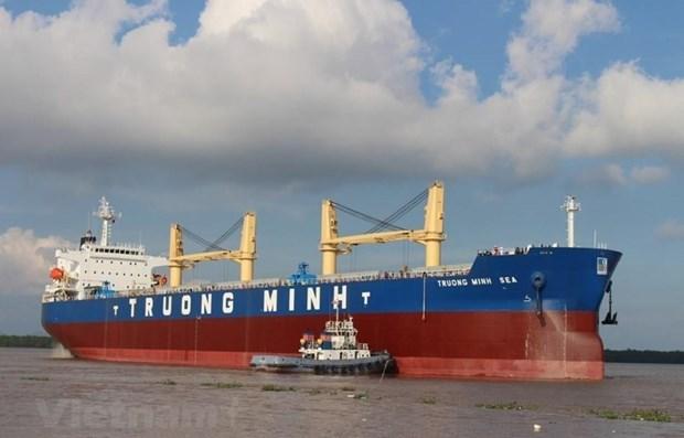 海上运输:现代化是占领市场的关键 hinh anh 1