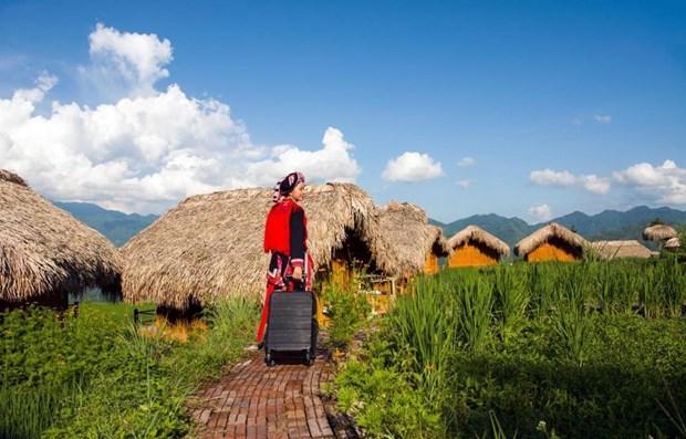 越南人为何在后疫情时代选择可持续旅游? hinh anh 1