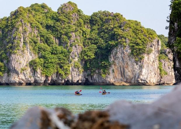 越南旅游业如何在新背景下推进数字化转型 hinh anh 3