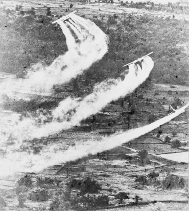 越南橙剂灾害60周年:携手抚平战争创伤 hinh anh 2